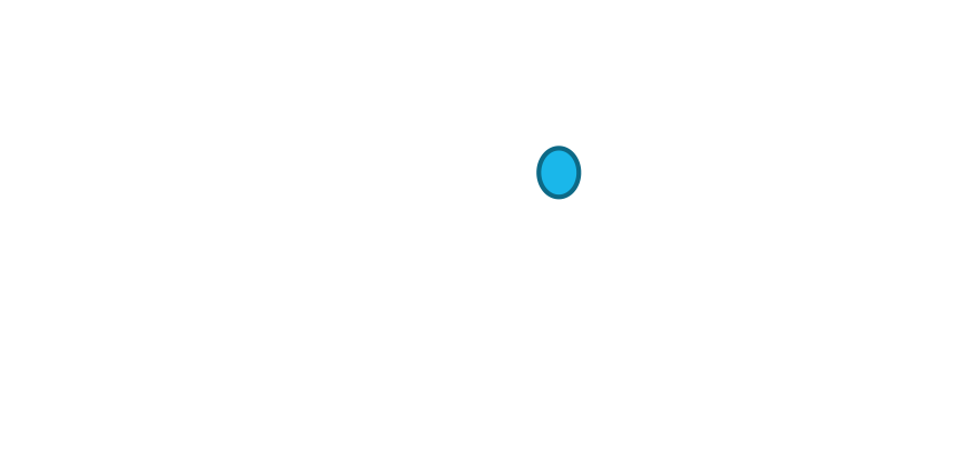 Smart OHS™